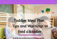 Toddler Meal Plan _ Tips and Warnings to feed a toddler