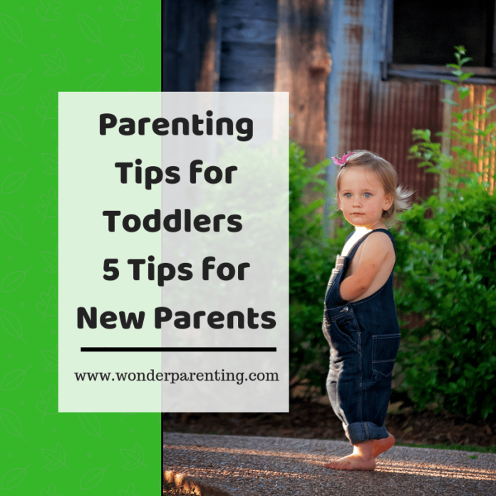 Parenting Tips for Toddlers 5 Tips for New Parents