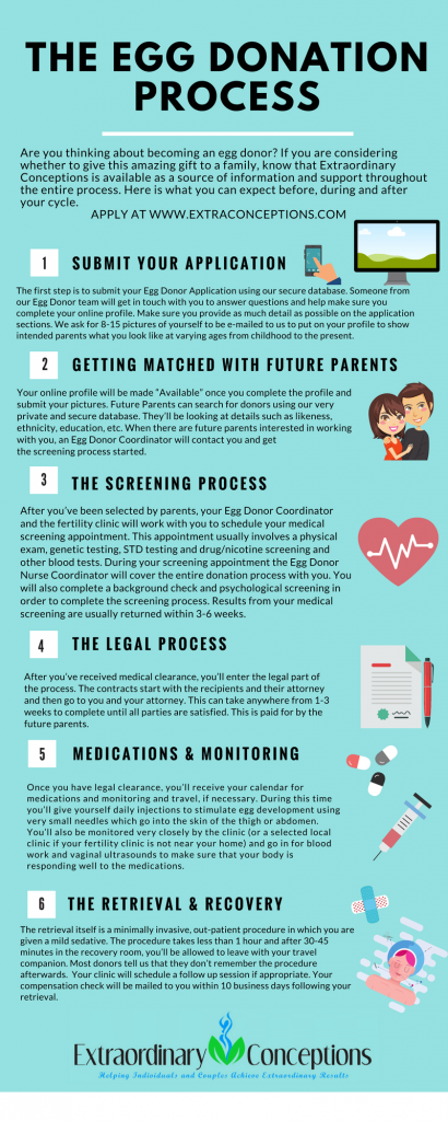 egg-donation-process-wonderparenting
